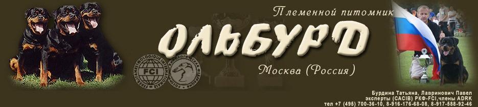 Питомник ротвейлеров Ольбурд г. Москва