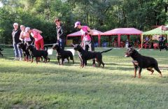 nats2018-kennel4